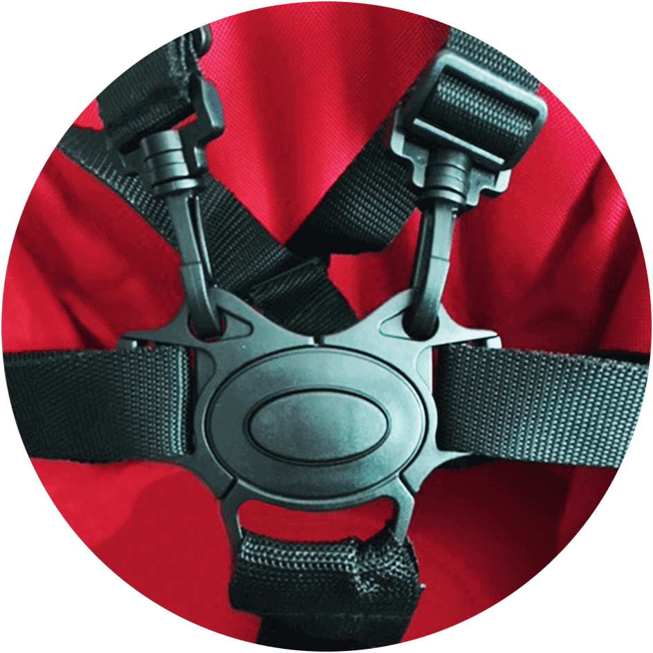 5-Point Harness - Guzzie & Guss